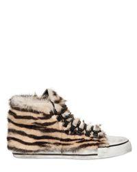 Black Dioniso Multicolor Tiger Print Pony Skin Sneakers