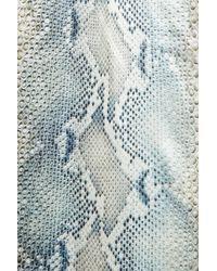 Roberto Cavalli - Blue Snake Print Silk-Satin Pants - Lyst