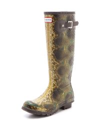 HUNTER Brown Hunter Snake Boots