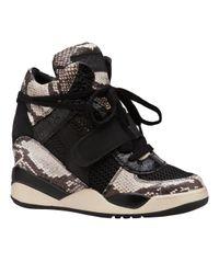 Ash Black Funky Wedge Sneaker