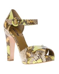 Studio Pollini Multicolor Python Sandal