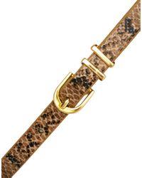 ASOS Brown Metal Keeper Super Skinny Waist Belt in Snake Print