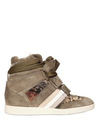 Serafini Brown 70mm Embossed Calf Suede Sneakers