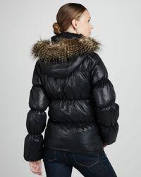 Sam Edelman Black Hooded Puffer Coat