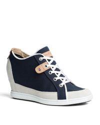 Tommy Hilfiger Blue Stella Sneaker for men