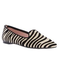 Pretty Ballerinas Multicolor Zebra Print Slipper