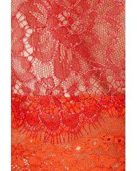 Alberta Ferretti Orange Lace Dress