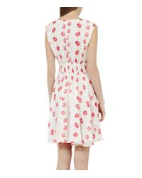 Reiss Multicolor Lunata Poppy Printed Fit and Flare Dress