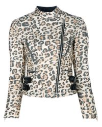 Rika Multicolor Tailored Biker Jacket