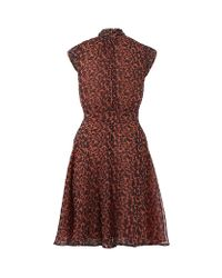 French Connection Multicolor Feline Wonder Dress