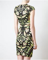 McQ Green Dragonfly Printed Stretch-Jersey Dress