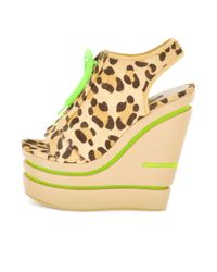 Senso Madison Wedge Black Pony with Green Laces