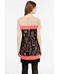 Oasis | Pink Lace Colourblock Dress | Lyst