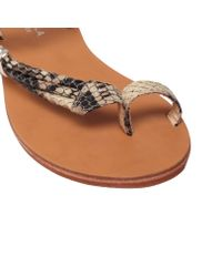 Carvela Kurt Geiger Brown Klipper