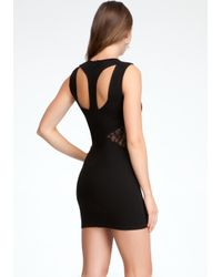 Bebe Black Lace Inset Dress Online Exclusive