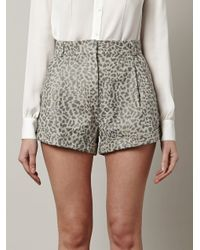 Lover - Gray Leopard Print Leather Shorts - Lyst