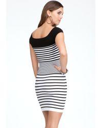 Bebe White Colorblock Stripe Bodycon Dress