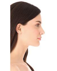 Rose Pierre - Metallic Harp Seashell Earrings - Lyst