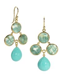 Elizabeth Showers - Blue Turbo Shell and Turquoise Drop Earrings - Lyst