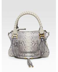 chloe designer bag - chloe python large marcie satchel, chloe wallets and purses