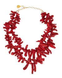 Devon Leigh Red Coral Necklace