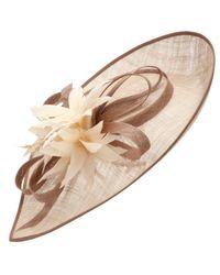 John Lewis Brown Hana Teardrop Hat Disc Fascinator