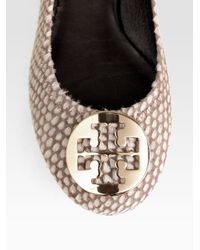 Tory Burch Multicolor Reva Snakeprint Leather and Calf Hair Ballet Flats