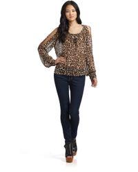 Love Sam Multicolor Cold Shoulder Topleopard