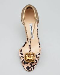 Manolo Blahnik Metallic Drina Leopardprint Tstrap Sandal