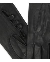 Dents Black Long Leather Gloves