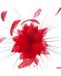 John Lewis Red Emma Starburst Fascinator