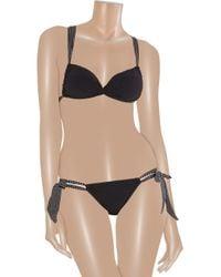 Charlie by Matthew Zink - Black Jane Polka-Dot Bikini - Lyst