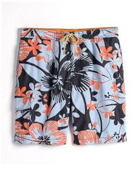 "Tommy Bahama | Black Naples Painterly Palm 6"" Swim Trunk for Men 