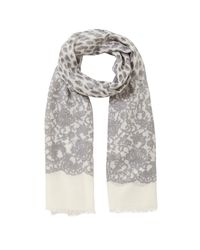 Lola Rose Gray Leopard Lace Scarf