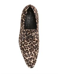 Burberry Prorsum Natural Leopard Printed Ponyskin Lace-up Shoes for men