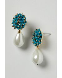 Anthropologie | White Seed Cluster Drops | Lyst