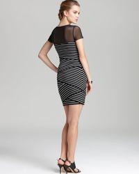 Bailey 44 Black Dress Medina Mesh Top Striped