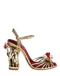 Dolce & Gabbana Multicolor 105mm Rose Calf Leather Cage Sandals