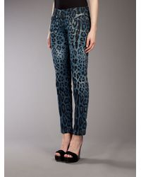 Dolce & Gabbana Blue Leopard Print Jean