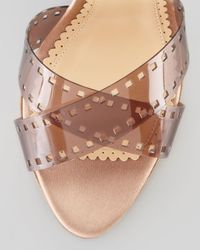 Charlotte Olympia Brown Girls On Film Platform Sandal Sepia