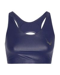 Lucas Hugh Blue Lazer Stretch Sports Bra