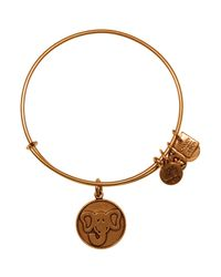 ALEX AND ANI | Metallic Elephant Expandable Wire Bangle, Charity By Design Collection | Lyst