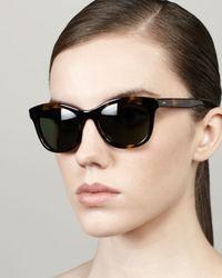Barton Perreira Brown Bancroft Sunglasses Dark Tortoise