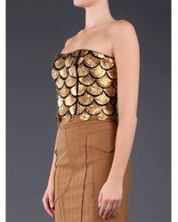 Altuzarra Metallic Binta Embroidered Bustier Top