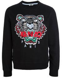 KENZO Black Slogan Tiger Print Sweatshirt for men