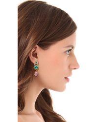 Elizabeth Cole Metallic Crystal Drop Earrings