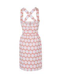 Boutique by Jaeger Pink Floral Halter Neck Dress