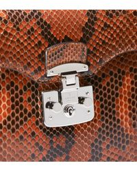 Gucci   Brown Lady Lock Python Briefcase Clutch   Lyst