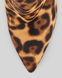 Vera Wang Lavender Multicolor Bianca Leopardprint Calf Hair Ankle Boot