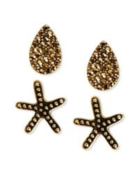 Lucky Brand | Brown Goldtone Pave Starfish Stud Earrings | Lyst